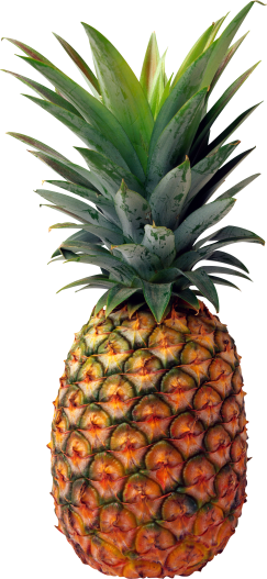 pineapple-color