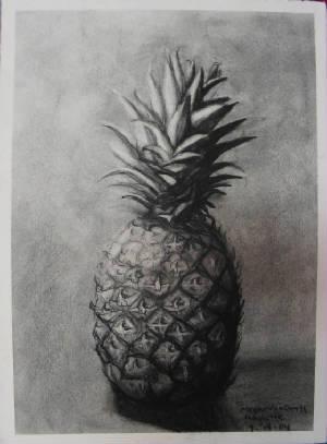 pineapple-megan-vangroll