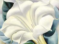 flores-98h-georgia-o-keeffe-19321