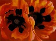 okeefe-oriental-poppies