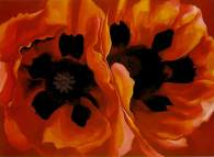 okeefe-oriental-poppies